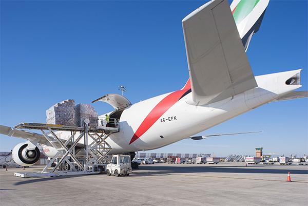 La carga aérea está entre las esperanzas de las aerolíneas.