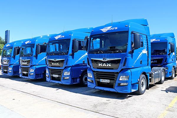 Imagen de las nuevas unidades de Servicios de Mediación de Transporte Pardos.